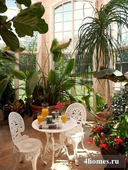 Зимний сад в доме как уголок для отдыха и созерцания красоты