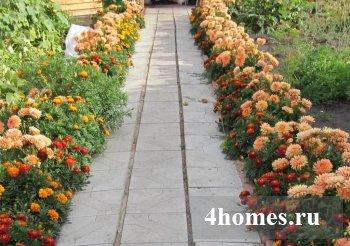 Цветник своими руками: дизайн и подбор растений