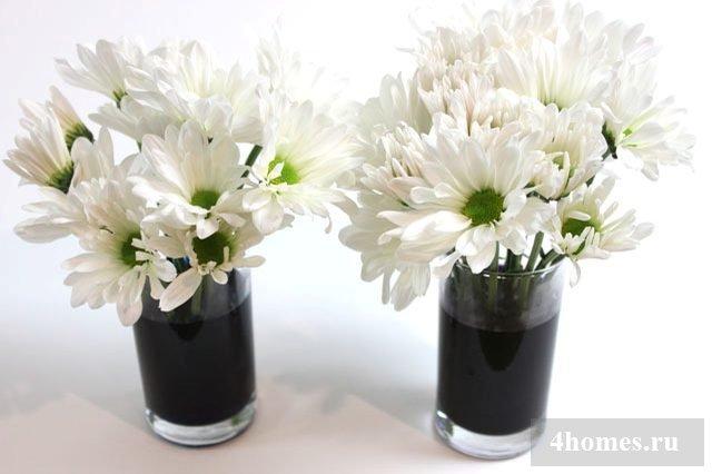 Покраска цветов в домашних условиях 380