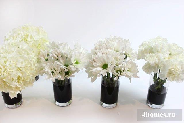 Покраска цветов в домашних условиях 661