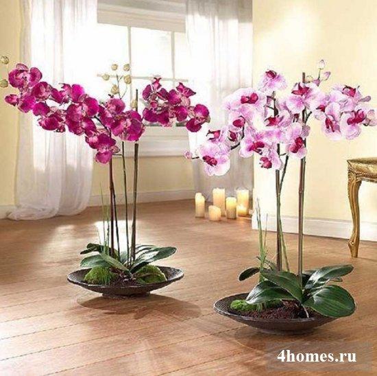 Искусственные цветы для домашнего интерьера – оригиналь ...