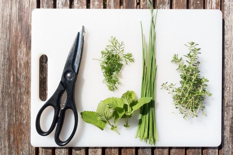 Кулинарные травы