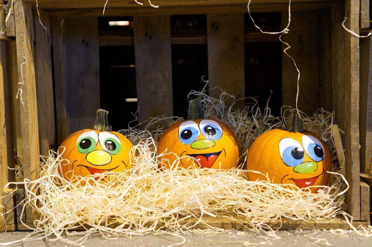 Три веселых тыквы