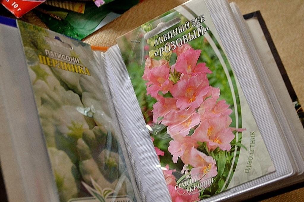 Семена цветов хранятся в фотоальбоме