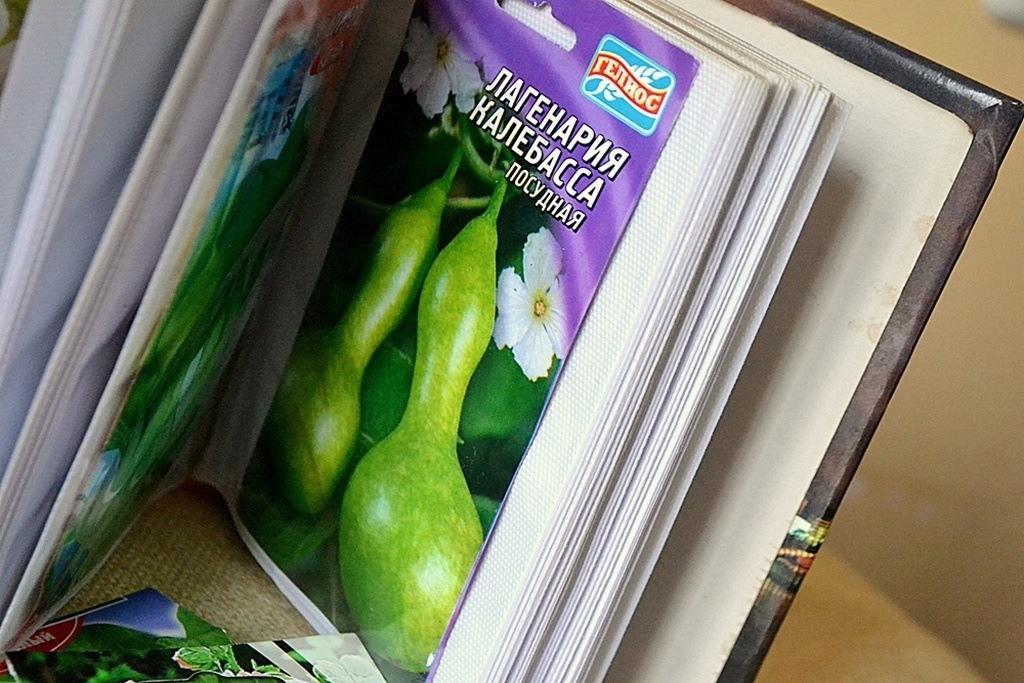Семена в кармашке альбома для фото